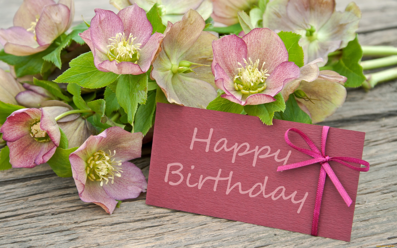 оказалось, открытка с днем рождения элизабет фотографы или моделям